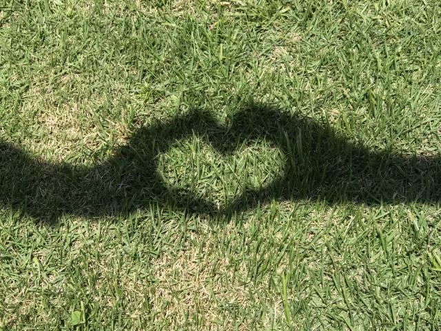 芝生に映ったハートサインの影