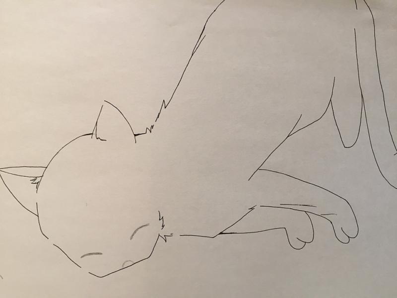 ツインレイ男性の本音は辛くてたまらない…を表現したネコ